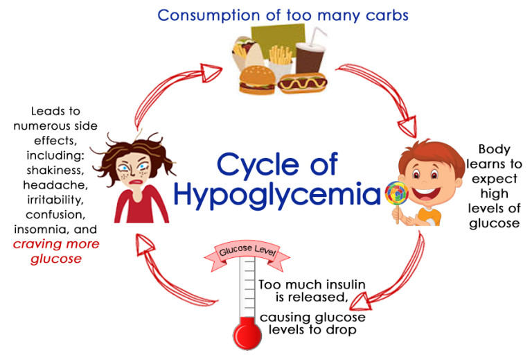 The-Cycle-of-Hypoglycemia-768x512