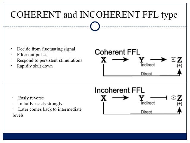 feedforward-loop-database-4-638