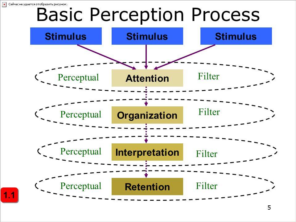 Basic+Perception+Process