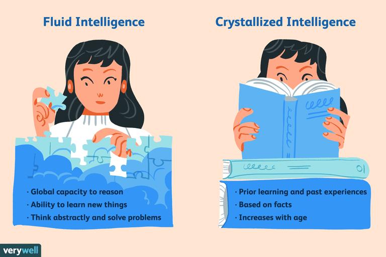 fluid-intelligence-vs-crystallized-intelligence-2795004_color2-5b69d275c9e77c0050ba7290
